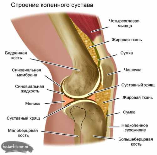 Если же коленки хрустят изза болезней или травм надо пройти курс терапии