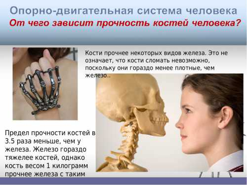 Ноют кости